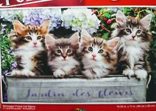 New 500 Piece Jigsaw Puzzle (Norwegian Forest Cats)
