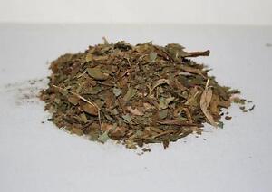 DEER TONGUE LEAF Native American Botanical Smoke Herb 1 Ounce Pack