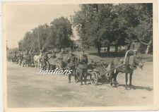 Foto Polen bei Kolo -Pferdegespann am Fluss Warthe  2.WK (e265)