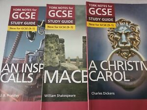 York Notes for GCSE Study Guide NEW GCSE Edition (9-1)
