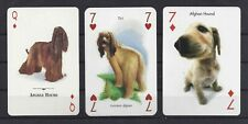 Three Single Dog Art Playing Cards Afghan Hound Markevicius Baraldi Artlist