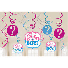 12 Baby Shower Girl Boy Hanging Swirls Gender Reveal Party Decorations Pink Blue