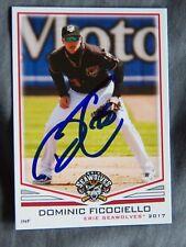 Detroit Tigers Dominic Ficociello Signed 2017 Erie Seawolves Auto Card