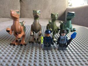Lego Jurassic World Dinosaur Lot Of 4 Velociraptors 2 Minifigures 75917 75920