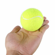 Cricket Tennis Ball Professional Rubber Tennis High-elastic Ball + Free Ship.