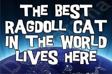 The Best Ragdoll Cat In The World Lives Here Fridge Magnet Gift/Present Kitten