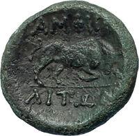 AMPHIPOLIS in MACEDONIA 148BC Rare R2 Ancient Greek Coin ARTEMIS & BULL i67460