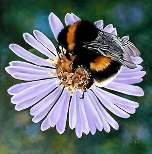 Original Bee on Aster Flower Acrylic on Box Canvas Wall Art Painting