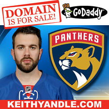 KEITH YANDLE .COM - Coyotes Rangers Panthers - Hockey NHL Domain Name - GoDaddy