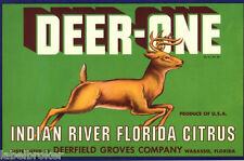 CRATE LABEL FLORIDA VINTAGE WABASSO DEER STAG FRUIT BOX GENUINE ADVERTISING A