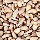 Sunflower Hearts Premium Quality High Energy Wild Bird Food No Shells No Mess