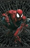 Spider-Man #1 Facsimile Clayton Crain SILVER Virgin Variant Set SOLD OUT PRESALE