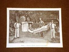 Madère en 1889 Hamac e Carrinho Madera Portogallo