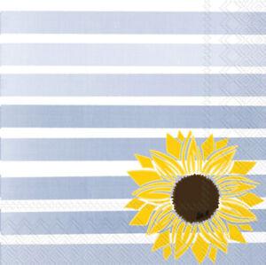 Boston International - Pattern Play Sunflower Cocktail Napkin - C933500