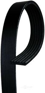 Serpentine Belt  ACDelco Professional  6K810