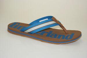 Timberland Wild Dunes Flips Sandals Flip-Flops Men A19AN