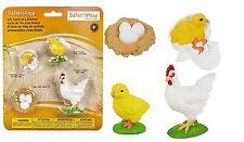 S662816 Safari Wissenschaft - Lebenszyklus eines Huhns (Set)