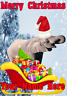 Elephant Santa Sleigh nnc206 Christmas Xmas Card A5 Personalised Greetings Cards