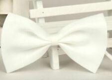 Colliers blancs en tissu pour chien