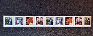 2017USA #5233-5266 Forever Flowers From the Garden Plate Number Coil Strip 9 PNC