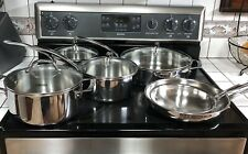Viking Professional 10 Piece Stainless Steel Cookware SetDish Wash