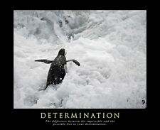 A2 SIZE DETERMINATION MOTIVATIONAL INSPIRATIONAL POSTER PHOTO ART ARTWORK PRINT