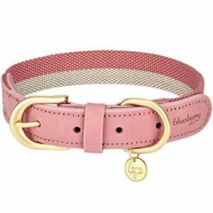 Blueberry Pet Polyester Fabric Webbing and Soft Genuine Leather Dog Collar in