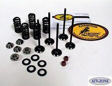 KibbleWhite Black Diamond Valves with Spring Kit and Seals  WR YZ 250F 01-13