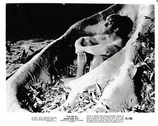 """The Sin of Adam and Eve""  Vintage Still 1972"