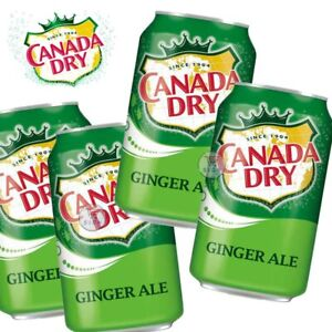 CANADA DRY GINGER ALE CANS SOFT DRINK 355ML ( 2 / 3 / 4 CANS)