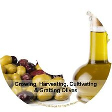 Growing Harvesting Cultivating Grafting Olives Seeds Making Olive Oil Books CD