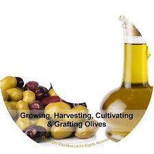 Growing Harvesting Cultivating Grafting Olives Seeds Making Olive Oil Books CD