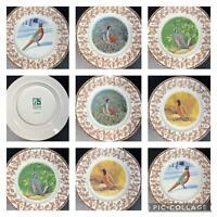 "8 National Wildlife Federation Plates WILD BIRDS w/Oak Leaf Acorn Pattern 8"""