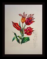 DALI Florals Tulips Girafe en Feu Hand Signed Numbered Etching Surreal ART