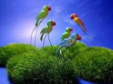 15 Miniature Dollhouse FAIRY GARDEN Accessories Tiny mix Color Parrot Picks