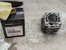 Véritable KAWASAKI Cylindre Moteur 11005-2162