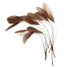 Brown feathers for hair hat fascinator wedding UK diamond craft feather (x12)