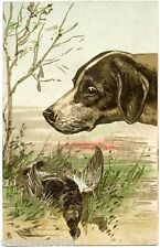 Dog of Chasse. Perdrix. Hunting Dog. Partridge. Gaufré. Embossed