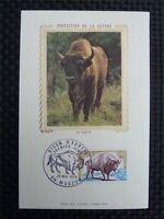 FRANCE MK 1974 BISON WISENT MAXIMUMKARTE CARTE MAXIMUM CARD MC CM c3106