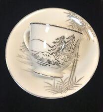 Lithopane Tea Cup and Saucer