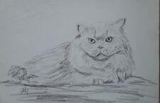 """"""" Chat vous regarde  """"  dessin crayon graphite 21x29 cm"""