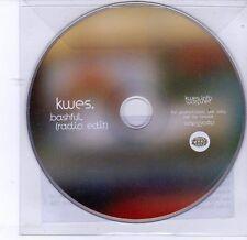 (DV247) Kwes, Bashful - 2012 DJ CD