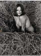 c.1970 PHOTO KREUTSCHMANN NUDE LARGE PRINT # 292