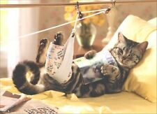 Cat in Traction Get Well Card - Greeting Card by Avanti Press