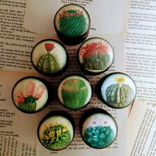 NEW DESIGN Boho Cacti Succulents Decoupage Drawer Cupboard Knobs x 8 Handmade