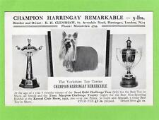 Champion Harrigay Remarkable Yorkshire Toy Terrier Kennel Club 1932 Dog London