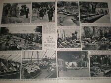 Photo article on the RHS Chelsea Flower Show 1952  refO50s