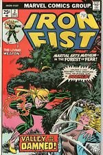 IRON FIST # 2 -  VALLEY OF THE DAMNED ( BYRNE ART - ND 1975 )