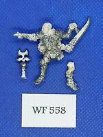 Warhammer Fantasy - Chaos Realms - Classic Slaanesh Champion Damaged - WF558