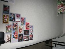 San Francisco 49ers 16 Card Lot(Young, Rice, Simpson, Montana, Gore, Smith, Ka )